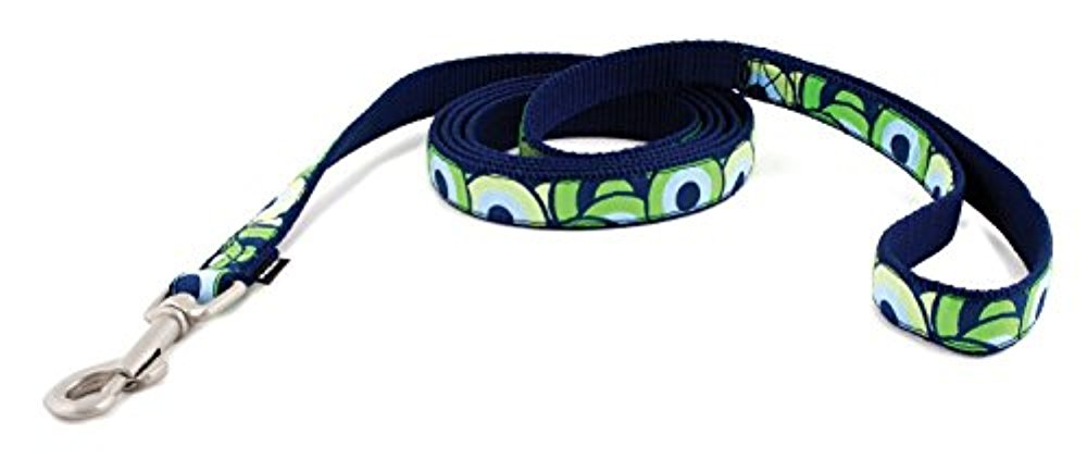 PetSafe Fido Finery Dog Leash, 1-Inch by 6-Foot, Stormy Circles [병행수입품]-